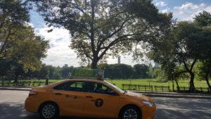 Central Park + taxi New York CIty